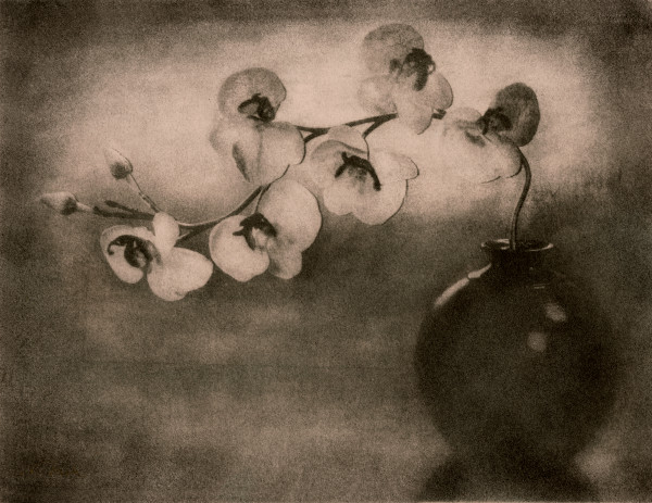 Fine Art Alternative Photography (Bromoil) To Last For Centuries.