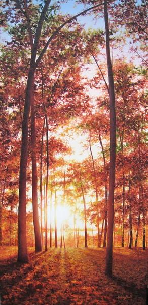 The Sun Shines Everyday