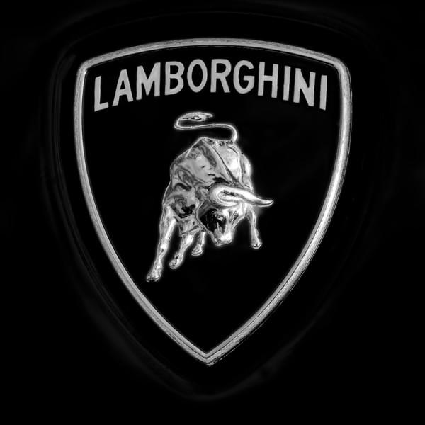 Lamborghini Bull Emblem Monochrome|Wall Decor fleblanc