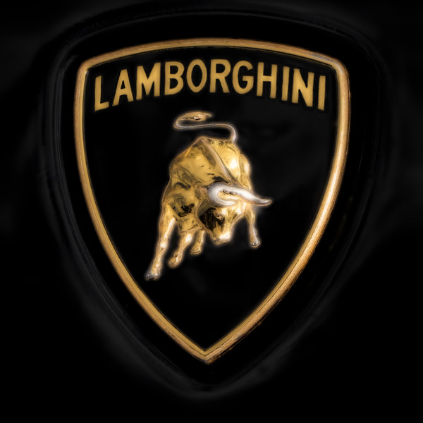 Lamborghini Emblem Logo Luxury Auto|Wall Decor fleblanc
