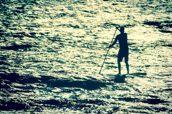 Paddle Surfer and Ocean Reflections, Coastal  Wall Art Print