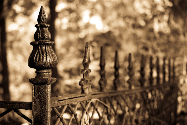 Sepia Antique Fence Wall Art Print