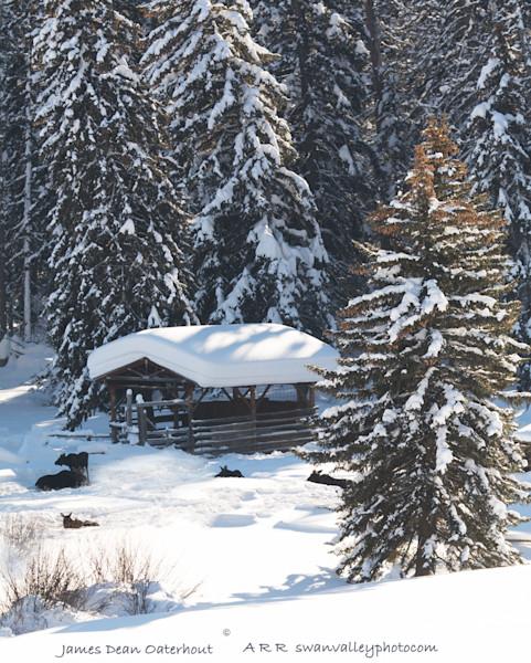 Wyoming Moose Spa