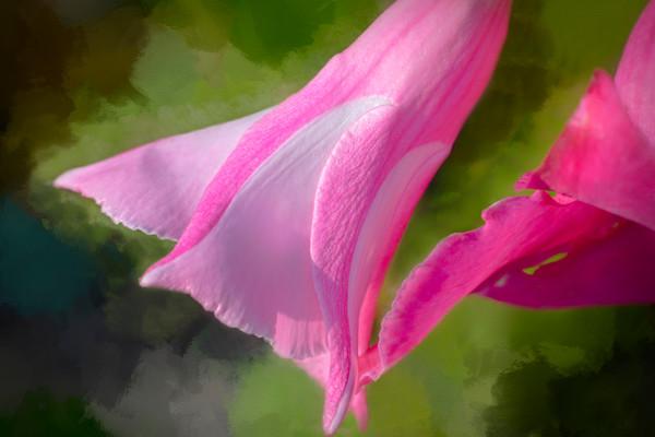 Classic Garden Bouquet Cute Painting|Wall Decor fleblanc