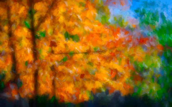 Early Fall Reflections Leaves Wall Decor fleblanc