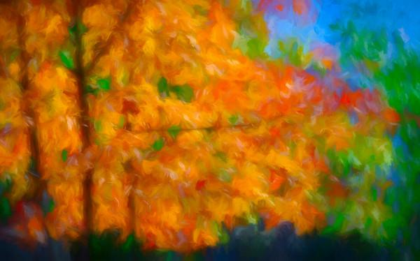 Art Photograph Reflections of Fall v2 Wall Decor fleblanc