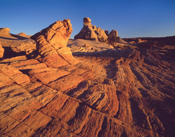 Navajo Sandstone in the Paria Wilderness, Arizona