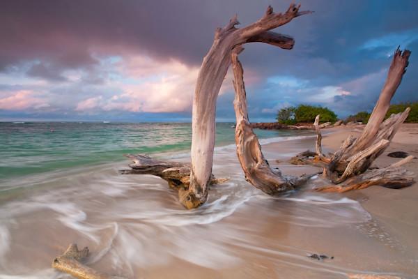 """""""Driftwood Sunset"""" - Caribbean beach art photography"""