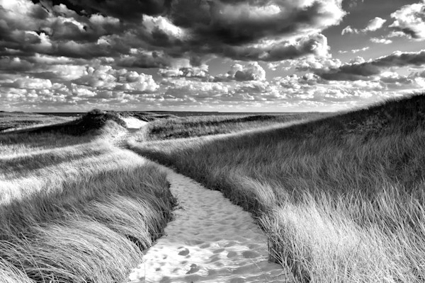 """Philbin Beach Path"" Black and white Martha's Vineyard beach photograph"