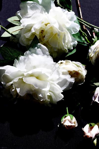 ORL-8458 Floral Inspiration 12