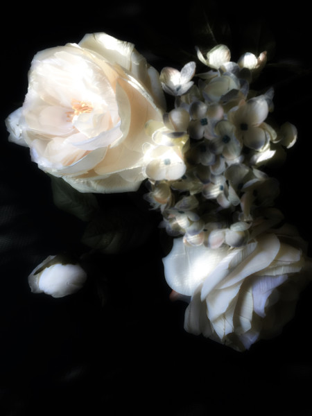 ORL-8466 Floral Inspiration 20