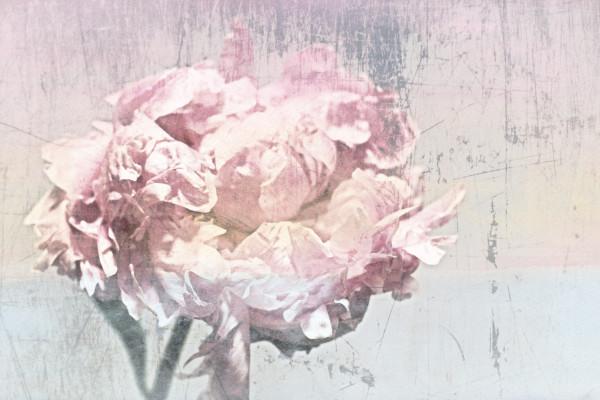 ORL-7980-9 Elegant Flower