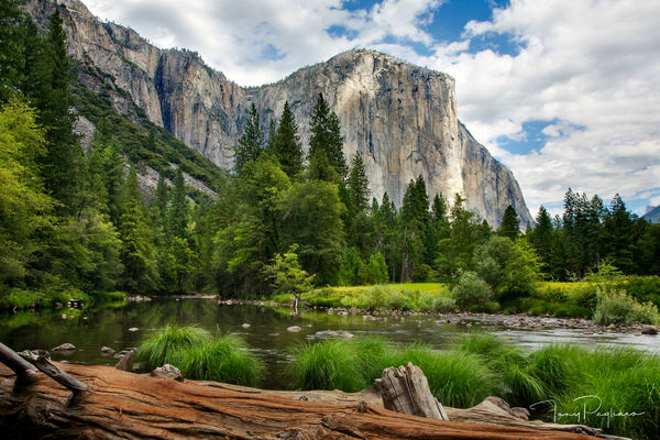 Yosemite photographs for sale as fine art by Tony Pagliaro