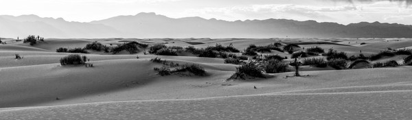 White Sands Dunes Panorama photograph for sale as art.