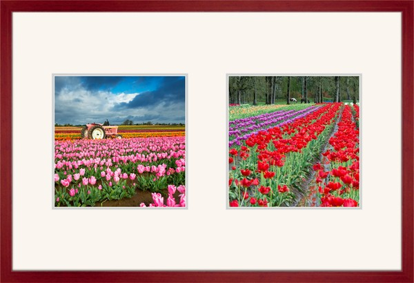 Multiple Fine Art Photographs Sold in a Single Wood Frame