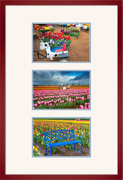 Tulip Field Photo Set II for Sale as Fine Art Photograph