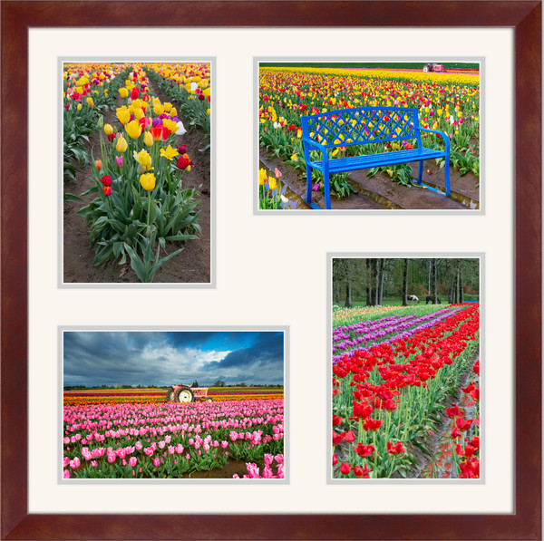 Tulip Field Photo Set III for Sale as Fine Art Photograph