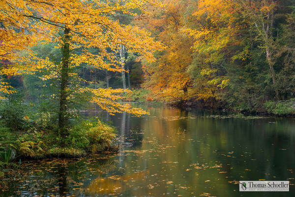 Painterly and Serene autumn pond fine art/New England secret destinations to enjoy nature/prints available by Thomas Schoeller