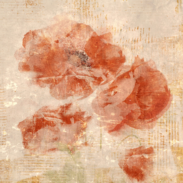 Abstract Poppies II