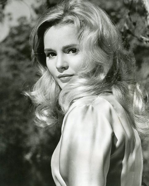 Original Vintage Press Print television actress Tuesday Weld