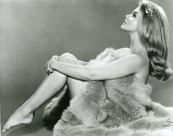 Original Vintage Press Print ann margret actress singer fur blanket sexy