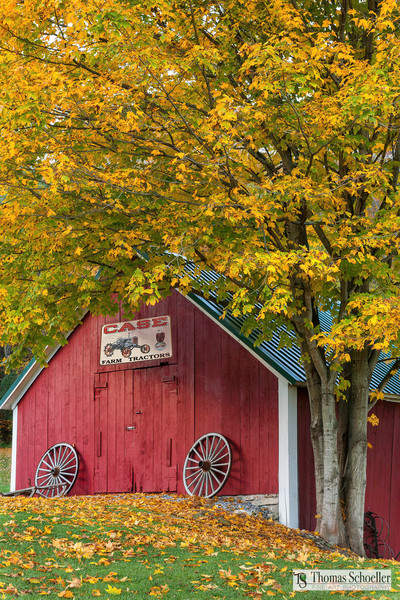 Nostalgic barn art prints/Little Red Vermont Shed by Tom Schoeller