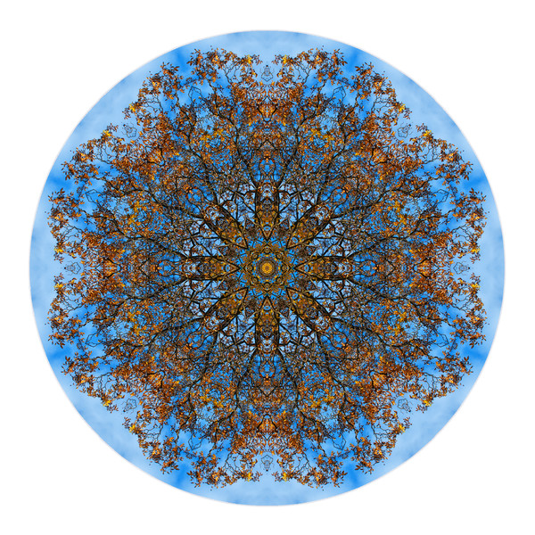October Window for sale as fine art photographic mandala.