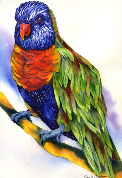 Rainbow Lorikeet art by Gayela's Premiere Watercolors|Main Store