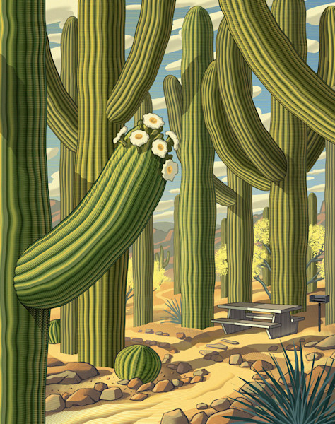 Saguaro National Park by Chris Gall