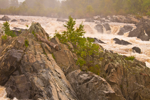 Fine Art Photograph of Rocks in Virginia Great Falls by Michael Pucciarelli