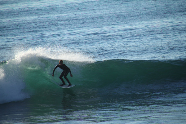 surfs up windansea beach