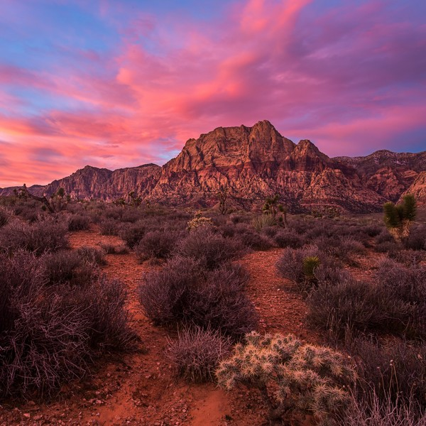 Fine Art Photographs of Red Rock | Las Vegas, NV