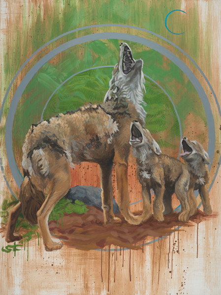 CoyWolf by Steven Teller For Sale
