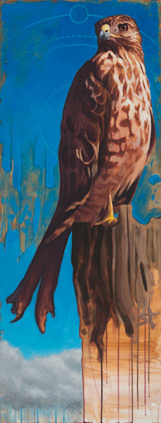 Eye of the Hawk by Steven Teller For Sale