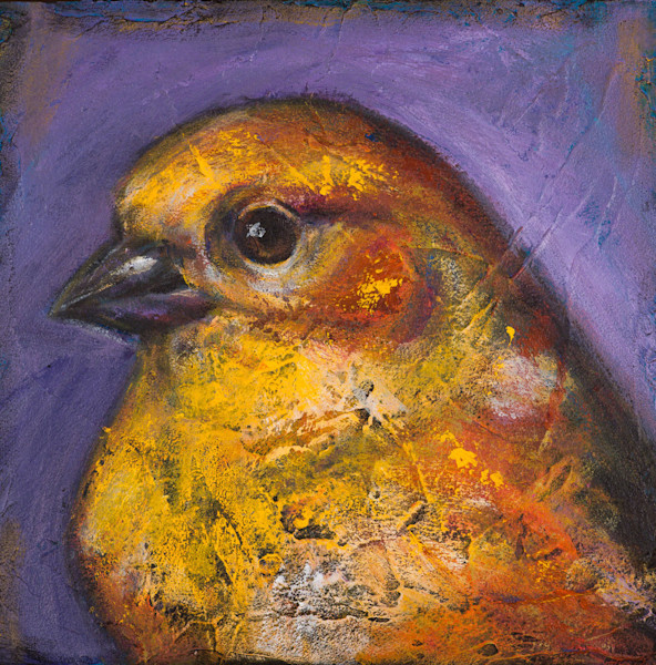 In Saves Going to Heaven: Goldfinch, artist Rosemary Conroy highlights the beauty of the goldfinch by setting it against a contrasting blue/violet background.