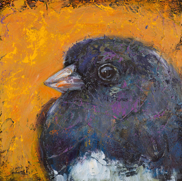 Set against a deep orange background, this irridescent Junco, with it's blues and deep purples, gazes serenely at the viewer. This image is from an original acrylic on panel titled Saves Going to Heaven: Junco, a painting by artist Rosemary Conroy.