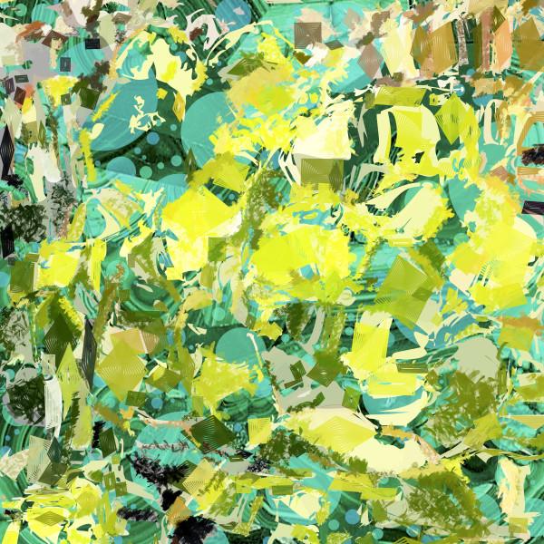 Succulent  by Peter McClard as seen in Santa Barbara, CA, at VectorArtLabs.com