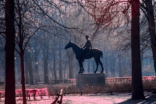 woman, horse, tiergarten