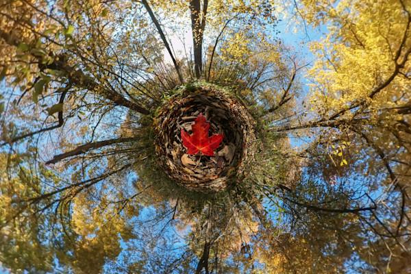 Maple Leaf Planet