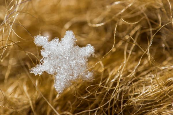 Snowflake on Wool Mitten
