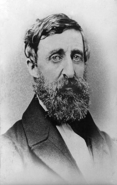 Henry Thoreau 1879