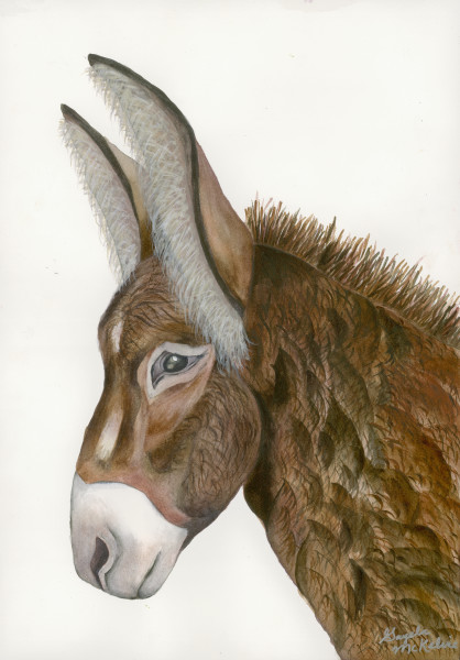 """Jacquie"" donkey art by  Gayela's Premiere Watercolors
