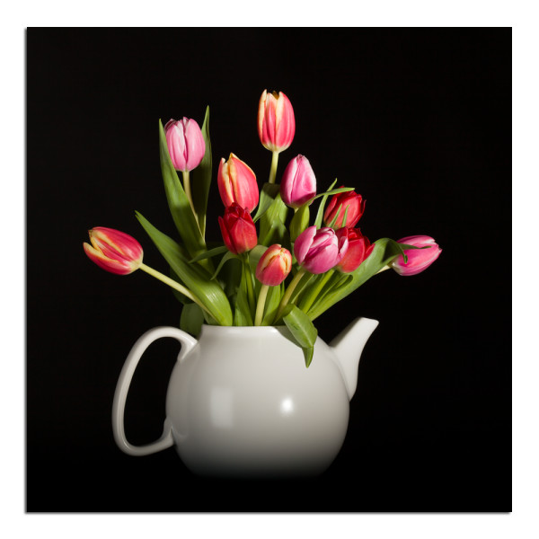 Eleven Tulips, Photographs