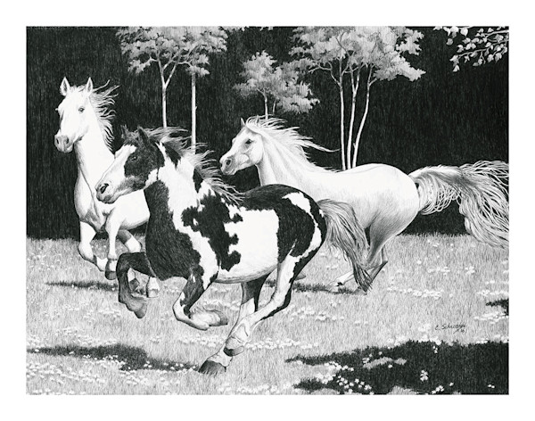 Wild Horses Original pen and Ink