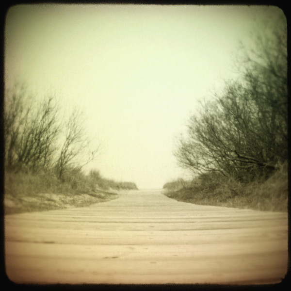 Wildwood Beach Path photograph - for sale as fine art prints