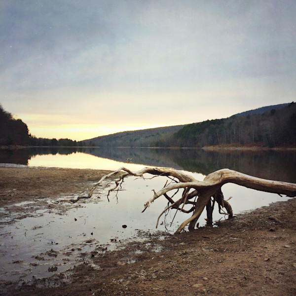 Driftwood on the Rondout photograph - for sale as fine art prints
