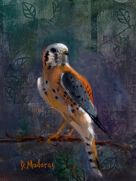 Wildlife Bird Painting by Diana Madaras | Peregrine Falcon