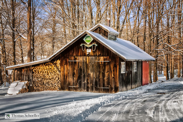 Vintage New England sugar shack on a rural snow covered country road. Quintessential fine art print!
