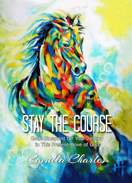 Stay The Course book by Camilla J. Charles