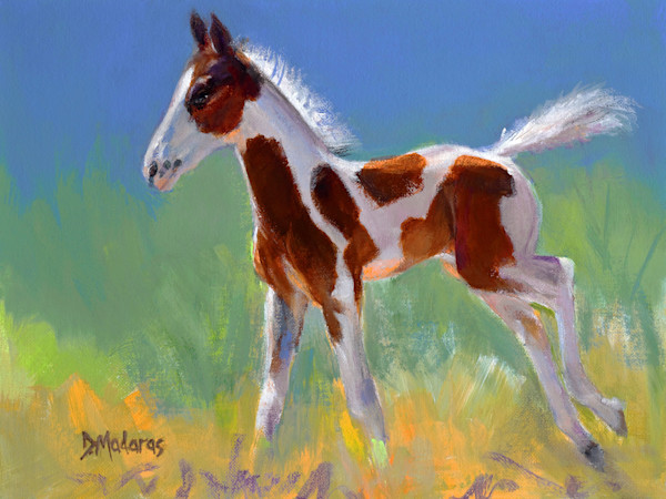 Western & Horse Prints| Native American Indian & Cowboy Art